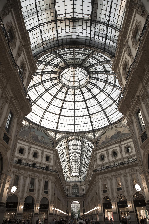 Foureyes-Milan-1F4A1351